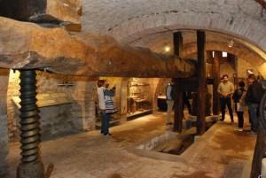 muvit-museo-del-vino-300x201