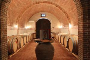 scuola di vino toscano Fattoria del Colle