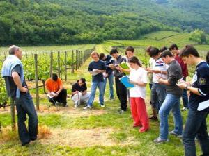 Turismo del vino in vigna con gli studenti