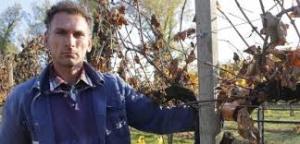 Luciano Ricchelli dopo il taglio delle viti