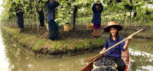 Vigne-più-straordianrie-del-modno-Tailandia-Monsoon-Valley