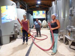 Montalcino-tinaia-Casato-Prime-Donne