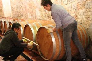 New-barrels-being-put-in-place-Montalcino-Casato-Prime-Donne
