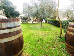 Barrels-as-garden-furniture