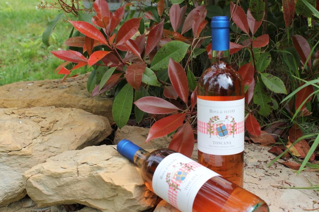 Rosato-Rosa di Tetto 2013 Fattoria del Colle