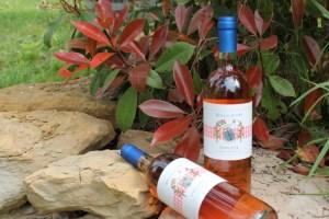 Rosa di Tetto 2013 - IGT Toscana Rosé - Fattoria del Colle - Donatella Cinelli Colombini