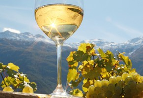 riesling-sole-naturno-autunno