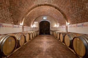 wine tours at Fattoria del Colle