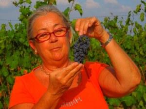 Donatella-Cinelli-Colombini- 2012-harvest