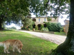 Agriturismo-Fattoria del Colle- Villa Archi vista dalla Quercia Italia