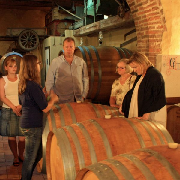 wine lovers experience