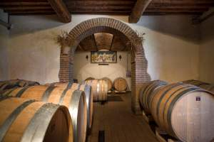 Brunello wine cellar - Casato Prime Donne - Montalcino