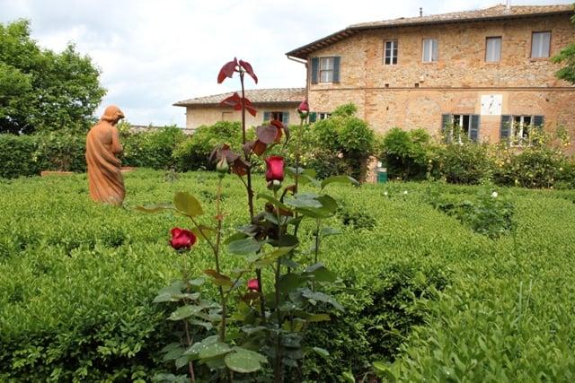 wine-destination-trekking-nelle-vigne-Fattoria del Colle - Agriturismo in toscana