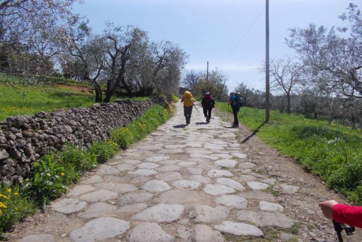 Cammini e piccoli comuni francigena-siena-viterbo-fondo-scheda-4