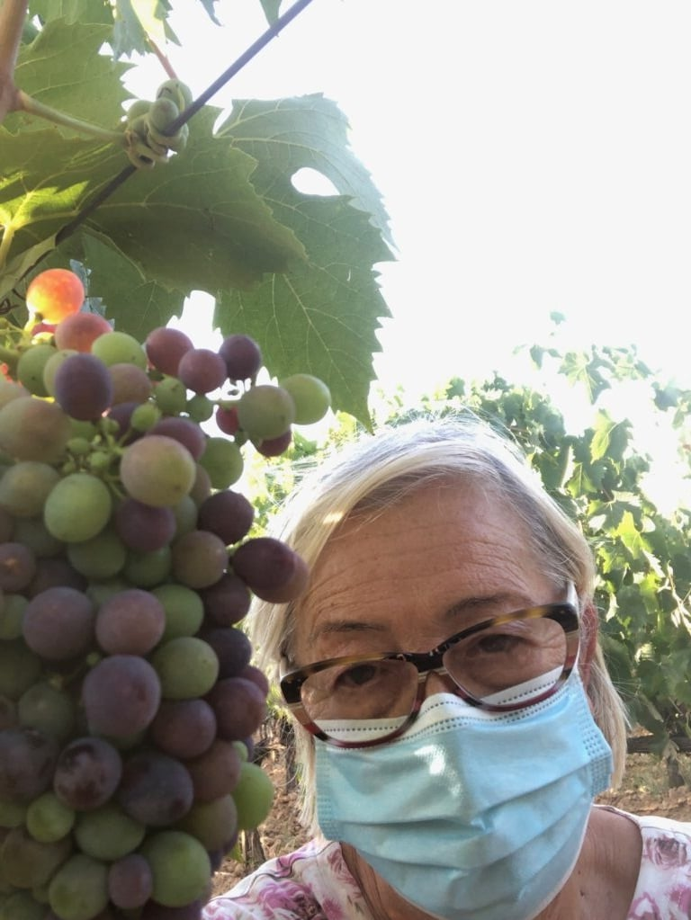 Sangiovese invaiatura 2020 - Fattoria del Colle - Doc Orcia