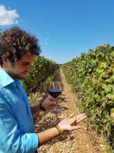 Stefano Quaglierini - Italian_wines
