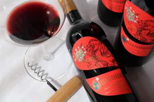Supertuscan Il Drago e le 8 Colombe 2018 - Donatella Cinelli Colombini