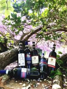 Offerta di 3 bottiglie di Montalcino e di Chianti Classico - Cinelli Colombini e Az. Terreno