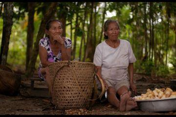 Nheengatu-a-lingua-da-Amazonia-doclisboa-2020
