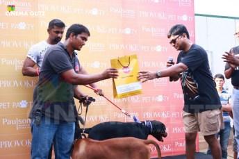 CinemaGlitz-Provoke-LifeStyle-Pet-Pawty-Event-Pics-21