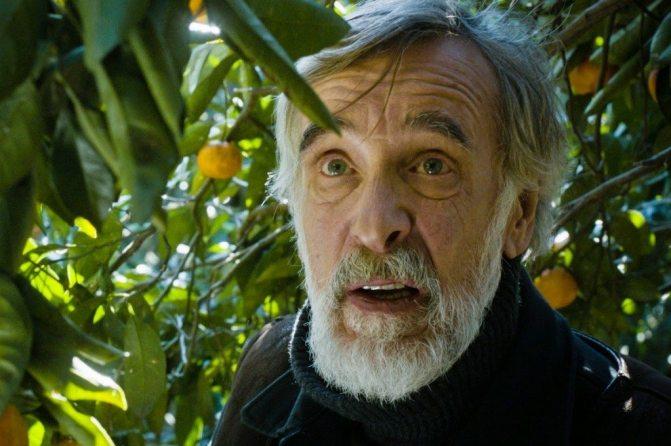 cinemanet   mandarinas