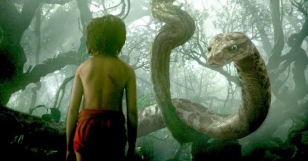 il libro della giungla_3