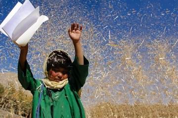 """""""E Buda Desabou de Vergonha"""" (Buda as Sharm Foru Rikht, 2007), de Hana Makhmalbaf - Divulgação"""