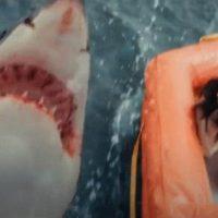 Ver y descargar Tiburón Blanco | Torrent y Netflix