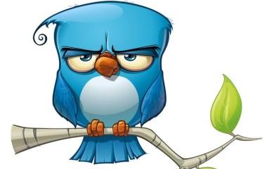 Twitter-crisis