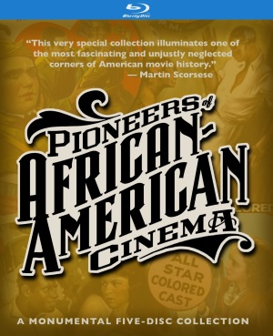 pioneersafricanam