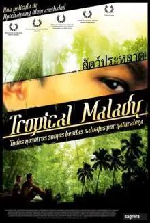 Poster do filme Mal dos Trópicos