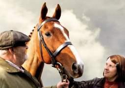Caballo ganador (Dark Horse)