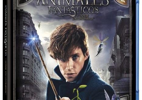 Viaja al mundo mágico de J.K. Rowling con Animales fantásticos y dónde encontrarlos ya en Ultra HD Blu-ray, Blu-ray 3D, Blu-ray y DVD