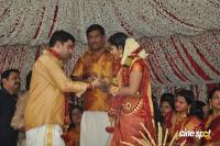 Navya Nair Marriage Photos Wedding New Photos (20)