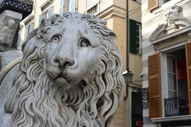 Tete de Lion Genes Ligurie