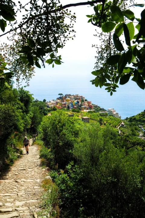 Randonner Cinque Terre