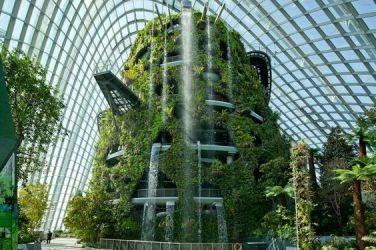 Permaculture, agroécologie, biodynamie, ville-forêt,....