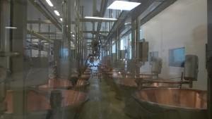 Produzione del Parmigiano Reggiano: caldaie in rame