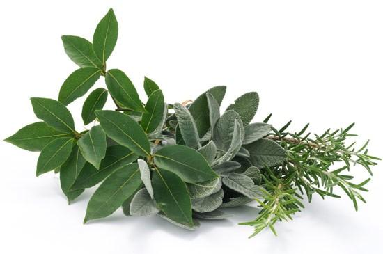 Salute erbe aromatiche e spezie al posto del sale - Spezie in cucina ...