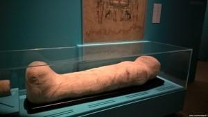 Bologna, Mostra Egizi, mummia