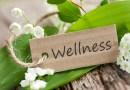 I 6 fattori del benessere