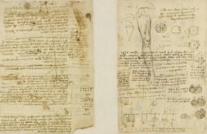 Codice Atlantico di Leonardo, due pagine di anatomia