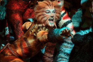 Cats il musical