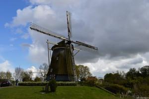 Amsterdam, Mulino a vento De 1200 Roe