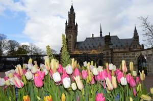 Olanda, L'Aia, Corte Internazionale di Giustizia