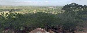 Panoramica dalla Rocca del Leone di Sigiriya