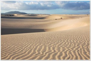 Dune di Corralejo, Fuerteventura, Isole Canarie