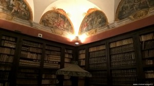 Imola, Palazzo Tozzoni, Biblioteca d'epoca