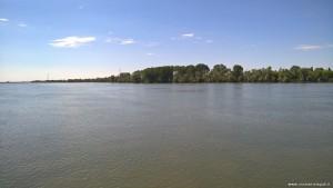 Parco del Delta del Po, Po di Venezia nei pressi di Ca' Tiepolo