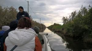 Riserva Naturale Salina di Cervia, visita in barca elettrica